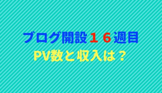ブログ開設16週目のPV数と収入報告