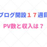 ブログ開設17週目のPV数と収入