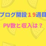 ブログ開設19週目のPV数と収入