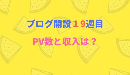 ブログ開設19週目のPV数・収入