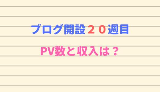 ブログ開設20週目に収入が一気に増加!PV数は?