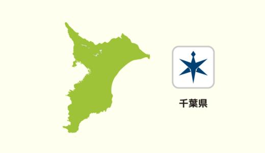 【全国のカップラーメン】千葉県は「醤油系」が多い?