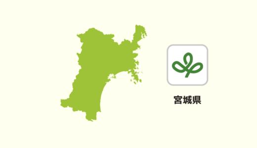【全国のカップラーメン】宮城県は「味噌系」が多い?