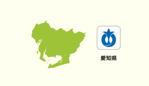【全国のカップラーメン】愛知県は「台湾ラーメン」が多いの?
