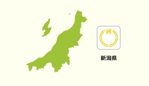 【全国のカップラーメン】新潟県は「背脂」が多い?