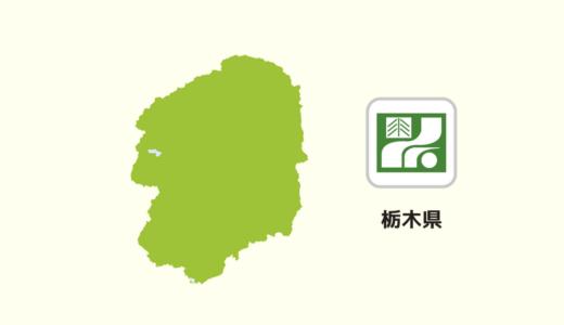 【全国のカップラーメン】栃木県は「佐野ラーメン」が多い?