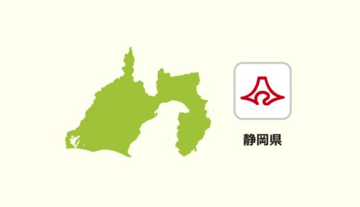 【全国のカップラーメン】静岡県は焼津産の鰹節が多いですね
