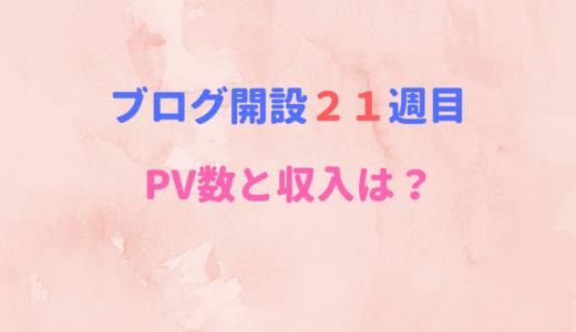【ブログ開設21週目】PV数と収入に変化はあったか?