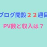 ブログ開設22週目のPV数と収入