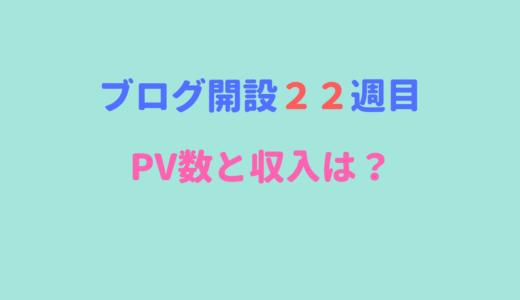 【ブログ開設22週目】どんどんPV数と収入が減っていく?