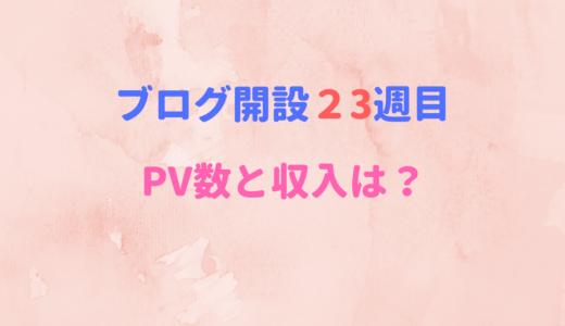 【ブログ開設23週目】PV数と収入に復調の兆しが!!!