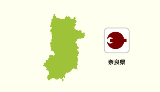 【全国のカップラーメン】奈良県は「天理」ラーメン