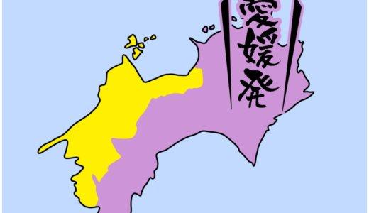 【全国のカップラーメン】愛媛県は、鯛ラーメンでしょうか?