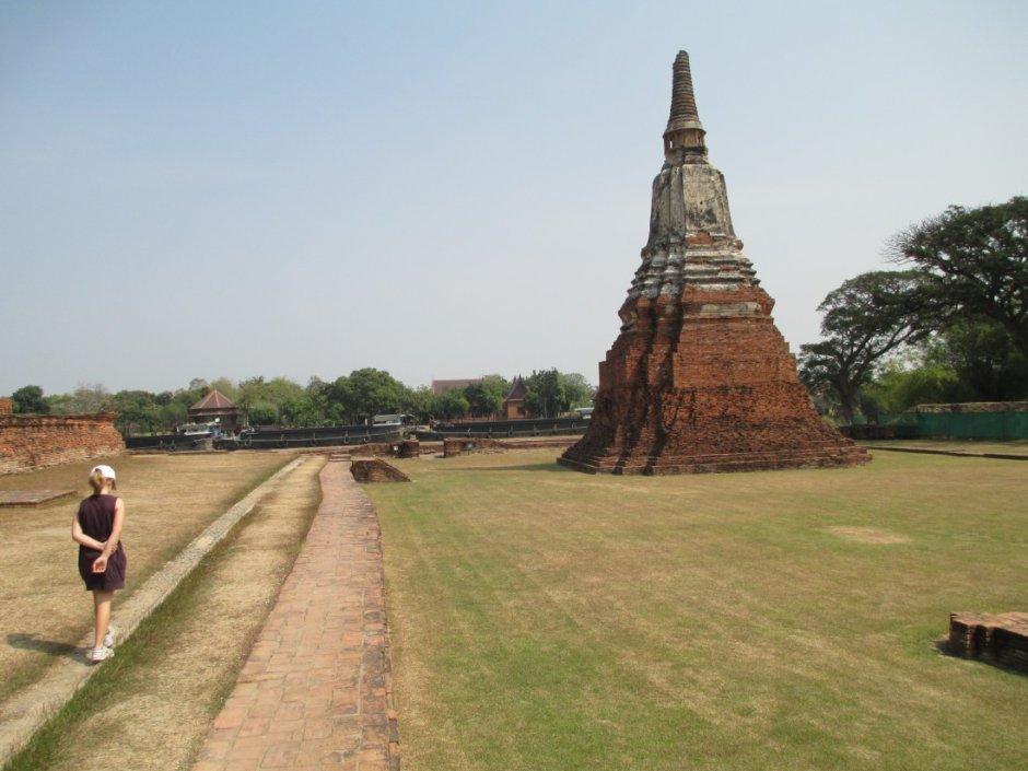 タイの写真