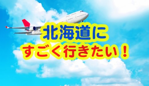 羽田空港から北海道各地の空港までの航空券料金+おすすめのお宿